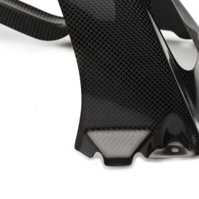 BMW S 1000R 2014-2016 Carbon Fiber Rear Hugger ABS 5