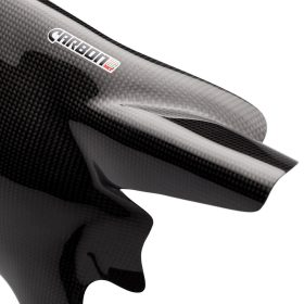 DUCATI Monster 796-1100 Carbon Fiber Swingarm Cover 1